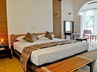 Luxury Villa, Bed & Breakfast - Deltota vacation rentals