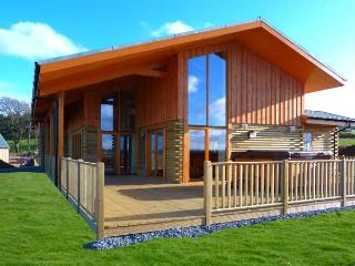 AURAE, quality lodge with hot tub, saunda, views, open plan accommodation, Cawdor, Inverness Ref 904499 - Inverness vacation rentals