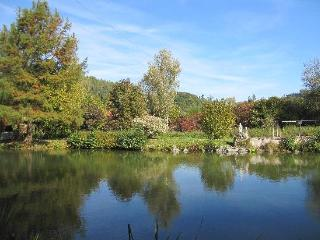 Vacation Home in Beutelsbach - spacious, quiet, comfortable (# 5046) - Bavaria vacation rentals