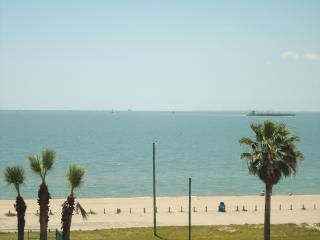 Beachfront Condo 3226 Free WiFi-Tropical Getaway - Corpus Christi vacation rentals
