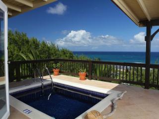 Tropical Oasis East Coast Barbados Retreat - Saint Joseph vacation rentals