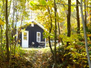 Private Cottage House w/ Secluded Walking Paths - East Burke vacation rentals