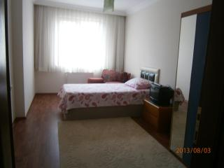 Bright 3 Bedroom Aparment for Rent - Ankara Province vacation rentals