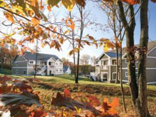 POCONOS WYN SHAWNEE VILLAGE - SKI, POOLS, HOT TUB - Shawnee on Delaware vacation rentals