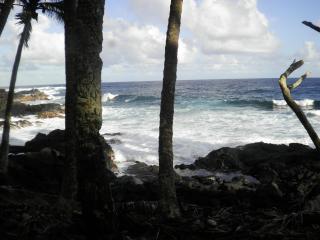 """Come """"home"""" to Hale Nanawale in Pahoa, Hawaii! - Pahoa vacation rentals"""