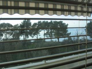 Apartment Oliva with seaview - Fazana vacation rentals