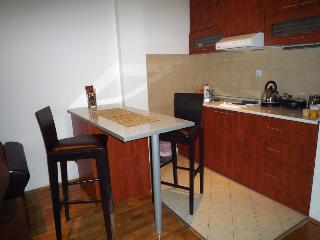 Cosy apartment in Belgrade, Slavija - Belgrade vacation rentals