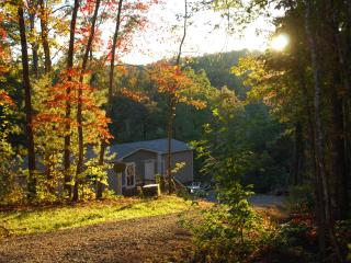 Pet-Family Friendly NC Mountain Getaway - Brasstown vacation rentals