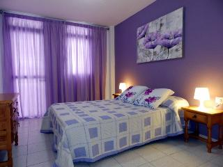 Nice apart.with wifi and swimmingpool in el Medano - Tenerife vacation rentals