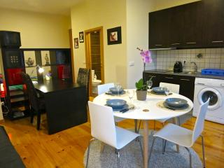 Charming Apt in Porto Downtown - Porto vacation rentals