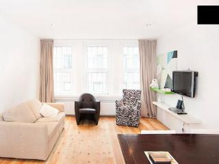 DOUBLE Central & Bright Apartment / Canal district - Amsterdam vacation rentals