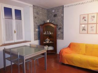 charming apartment with garden and internet (website: hidden) - Bettola vacation rentals
