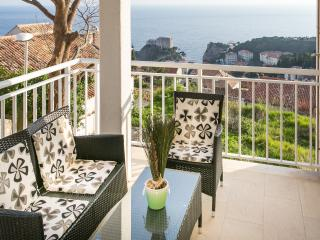 Superior 1bedroom apt near Old town :) - Dubrovnik vacation rentals