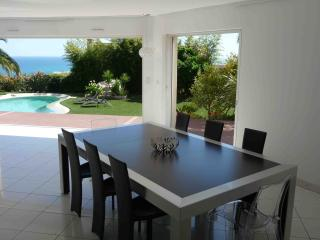 Luxury villa in Nice, quiet & close to center, A/C, heated pool - Nice vacation rentals
