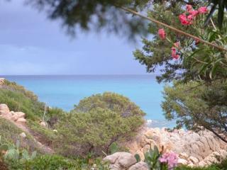 """B&B Giglio di mare...proprio sul mare Camera """"Aran - Siniscola vacation rentals"""