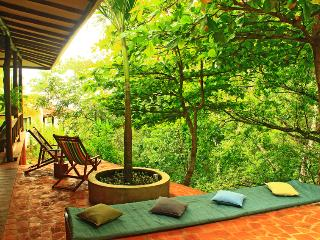 Villa Pochote the forest at your fingertips! - Montezuma vacation rentals