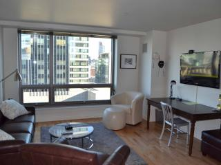 Theater District Luxury 1-Bed: 14th Floor Views - Boston vacation rentals