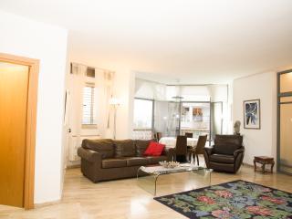 Raanana Nice 3 bedrooms & 3 bathrooms comfortable - Ra'anana vacation rentals