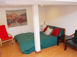 Cozy Garden Studio in Chicago - Chicago vacation rentals