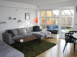 Nice townhouse just outside of Copenhagen - Snekkersten vacation rentals