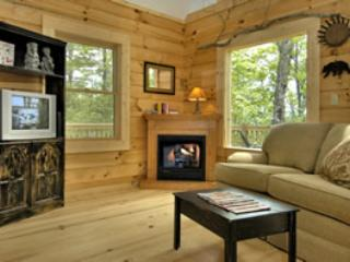 Heritage House - Spectacular Smoky Mountain Views - Bryson City vacation rentals