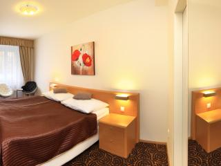 Double room Economy / Salvator Superior Apartments - Czech Republic vacation rentals