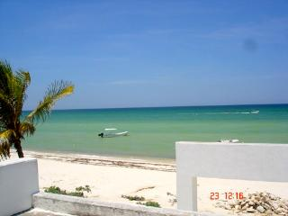 Casa Cocal Josefina by the Sea, INTERNET - Yucatan vacation rentals