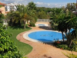 Swimmingpool - Apartment with swimmingpool in Calas de Mallorca - Calas de Majorca - rentals