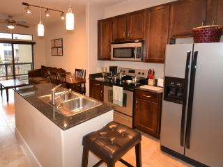 Wonderful Apartment in Galleri2GA11111303 - Houston vacation rentals