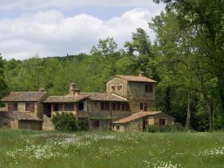 Il Mulino - Monte San Savino vacation rentals