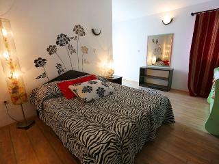 Villa diCastello 5+2 - Vlasici vacation rentals