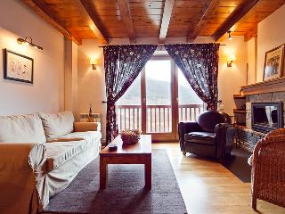Unya beautiful apartment 2 bedrooms - Baqueira Beret vacation rentals