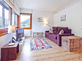 Betren privilege 4 people - Province of Lleida vacation rentals