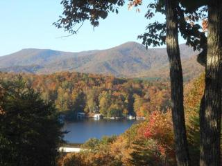 Memorial Day Lakeview Weekend Special ! ! ! - Flat Rock vacation rentals