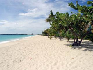 COCOBELLE... intimate 1 BR condo at Coco Beach Club on a fabulous pristine beach - Saint Martin-Sint Maarten vacation rentals