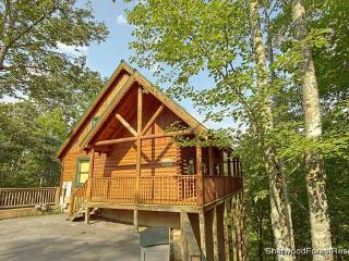 Affair Of The Heart - Tennessee vacation rentals