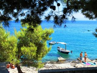 Leisure vacation home - Okrug Gornji vacation rentals