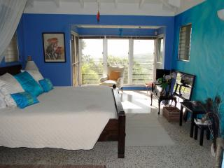 Mountain top Private Retreat - Romantic Bedroom - Christiansted vacation rentals