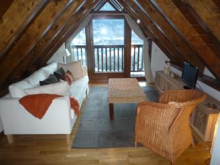 Unya beautiful duplex 3 bedrooms - Baqueira Beret vacation rentals