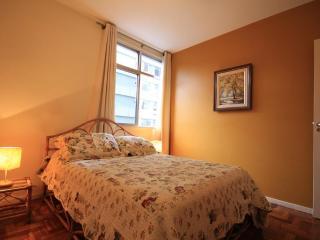 ★Fadel 401 - State of Rio de Janeiro vacation rentals