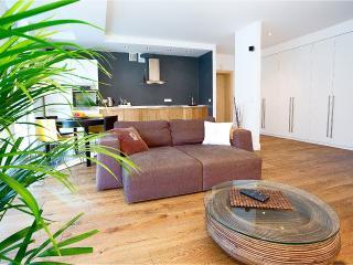 Deluxe Spacious Apartment-Central Vilnius - Trakai vacation rentals
