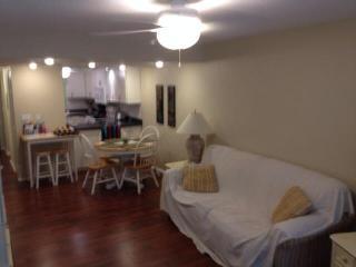 Charming condo in Sarasota, FL - Sarasota vacation rentals