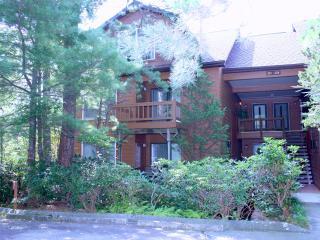 North Carolina Mountain Retreat - Cashiers vacation rentals