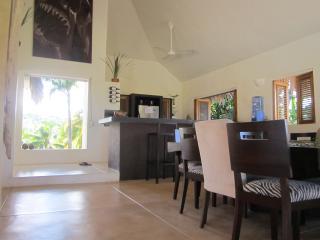 Luxury Villa With Oceanview, Infinity Pool, Park - Las Terrenas vacation rentals
