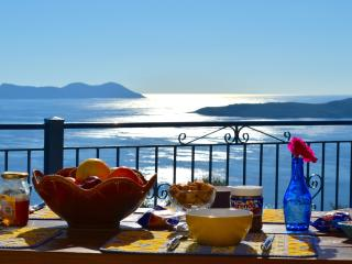 We are proposing you to book the full property with both villas - Lefkas vacation rentals