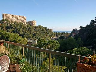 apart with sea view - Nice vacation rentals