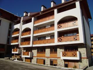 Luxury Flat for Ski and Summer Sports - Bansko vacation rentals
