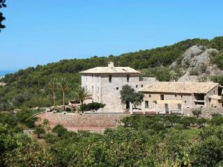 Mountain view Cas'hereu Sa Figuera, beautifully restored with an orange grove - Soller vacation rentals