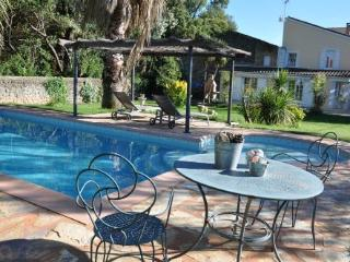 Couples Retreat with pool - Nizas vacation rentals