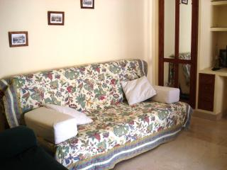 Bright apartment excellent location in the Centre - Seville vacation rentals